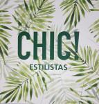 CHIC ESTILISTAS